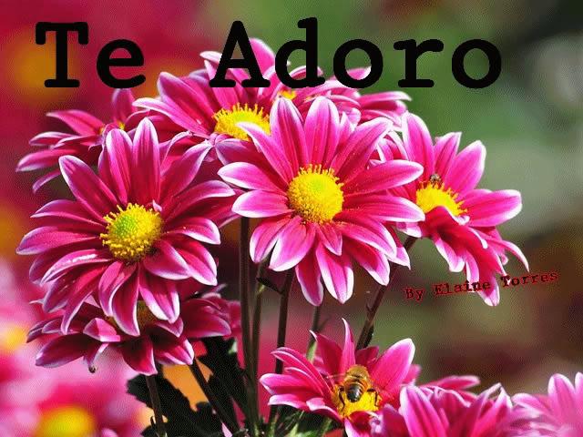 Recado Facebook Te Adoro – Flor