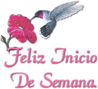Recado Facebook Feliz Início de semana – Rosa e Beija-flor