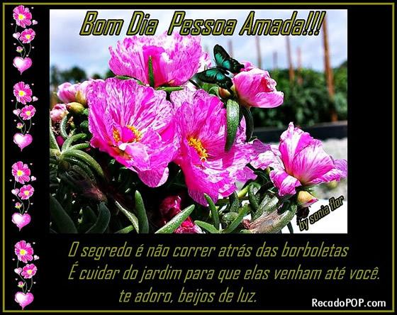 Recado Facebook Bom Dia Pessoa Amada