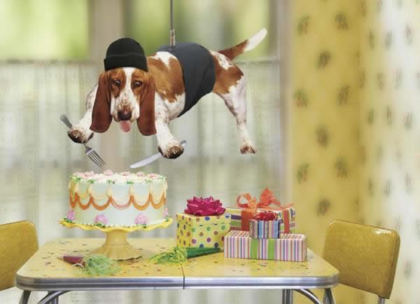 Recado Facebook Feliz Aniversário Engraçado
