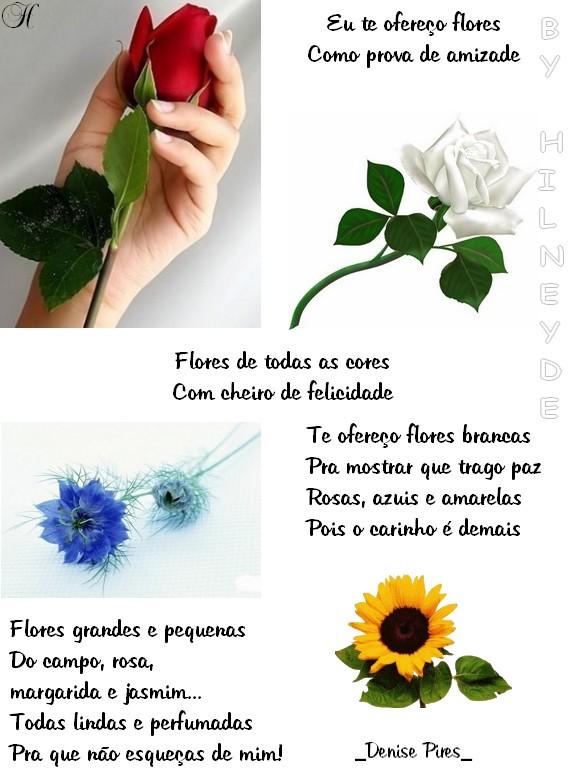 Recado Facebook Flores como prova de amizade