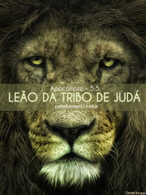 Recado Facebook Jesus é o Leão da Tribo de Judá