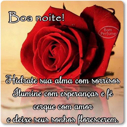 Recado Facebook Boa noite rosa
