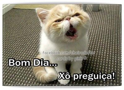 Recado Facebook Bom dia, xô preguiça!