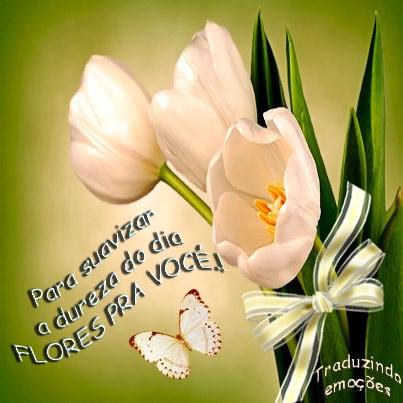 Recado Facebook Flores para melhorar seu dia!