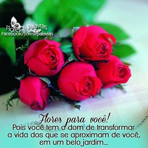 Recado Facebook Flores para você!