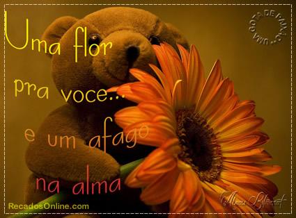 Recado Facebook Uma flor pra você!