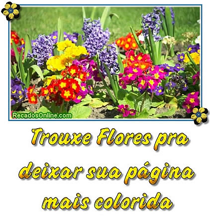 Recado Facebook Vim deixar sua página colorida!